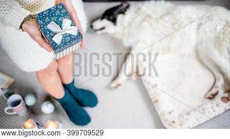 woman at home with dog hygge at Christmas time
