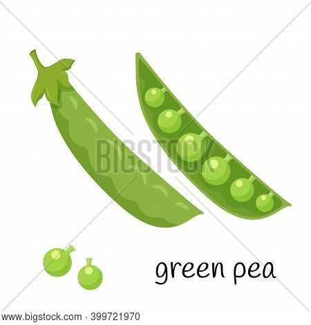 Green Peas In A Pod. Legume Plant In A Closed And Open Pod. Ingredient, An Element For The Design Of