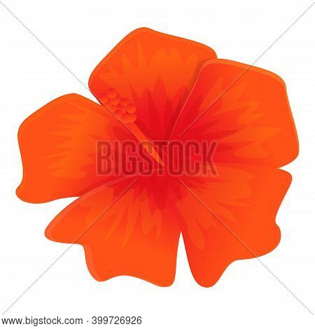 Hibiscus Icon. Cartoon Of Hibiscus Vector Icon For Web Design Isolated On White Background
