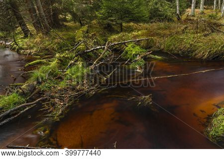 Jezerni Creek In Autumn Color Morning With Red Water And Green Beautiful Stones