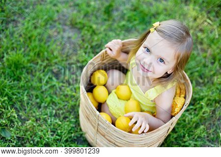 Little Child Girl With Lemons At Lemonade Stand In Park. Portrait Of Funny Baby In Basket With Fruit
