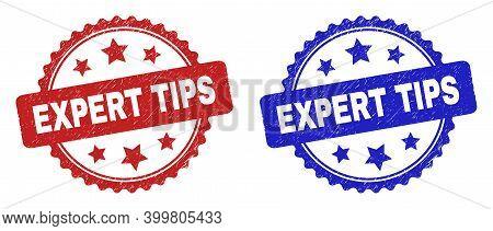 Rosette Expert Tips Seal Stamps. Flat Vector Scratched Seal Stamps With Expert Tips Caption Inside R