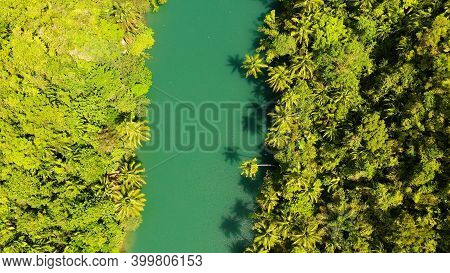 River In The Mountain Jungle Covered With Green Trees. Loboc River In A Rainforest In A Mountain Can