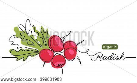 Red Radish Bundle, Bunch. Vector Illustration, Label, Background. One Line Drawing Art Illustration