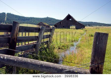 Barn In Pasture