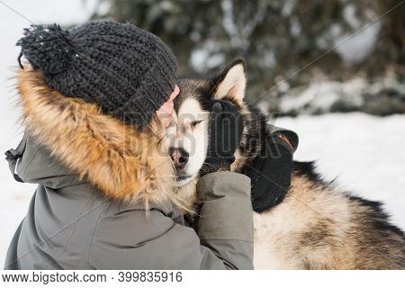 Alaskan Malamute Kissing With Woman In Winter Forest. Close Up.