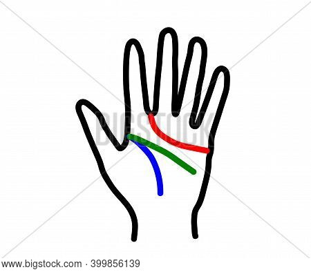 Hand And Lines On The Palm. Palmistry. Vector Illustration.