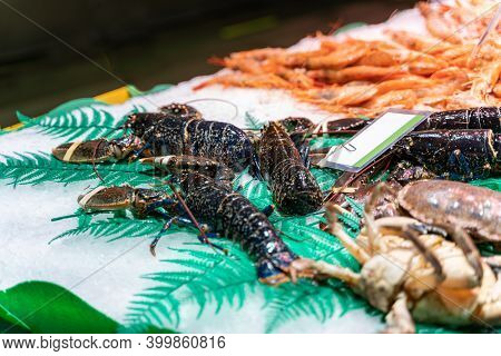 Different Sorts Of Fish, Crayfishes, Crabs, Molluscs, Arthropods At Fish Market