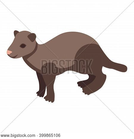 Zoo Mink Icon. Isometric Of Zoo Mink Vector Icon For Web Design Isolated On White Background