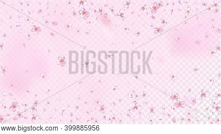 Nice Sakura Blossom Isolated Vector. Watercolor Showering 3d Petals Wedding Paper. Japanese Blooming