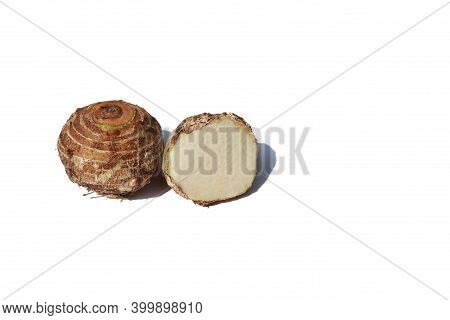 Taro Root Or Colocasia Esculenta Rhizome Isolated On White Background With Copy Space