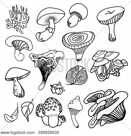Set Of Black Magic Psychedelic Mushrooms. Coloring Page Hallucinogenic, Fantazy Mushrooms. Black And