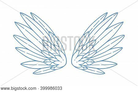 Pair Of Gorgeous Monochrome Wide Open Angel Wings With Feathers. Beautiful Attribute Of Cupid, Bird