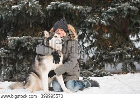 Alaskan Malamute Hugging With Woman In Winter Forest.