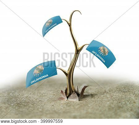 3d Illustration. 3d Sprout With Oklahoma Flag On White