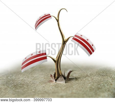 3d Illustration. 3d Sprout With Washington D.c.  Flag On White