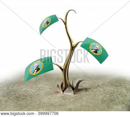 3d Illustration. 3d Sprout With Washington Flag On White