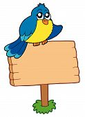 Wooden sign with sitting bird - vector illustration. poster