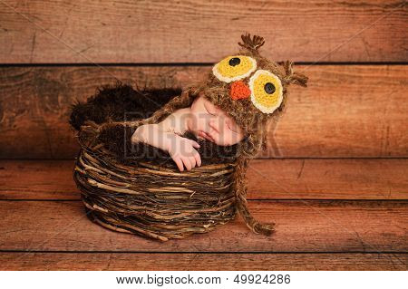 1 week old newborn girl wearing a brown owl hat and sleeping in a nest. poster