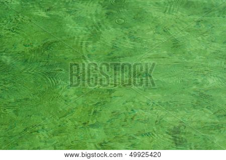 Raindrops On Green Freshwater