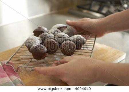 Freshly Baked Chocolate Cupcakes Held By Female Hands