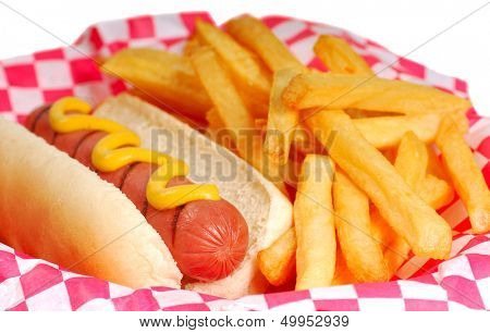 Freshly grilled hot dog with mustard and french fries.