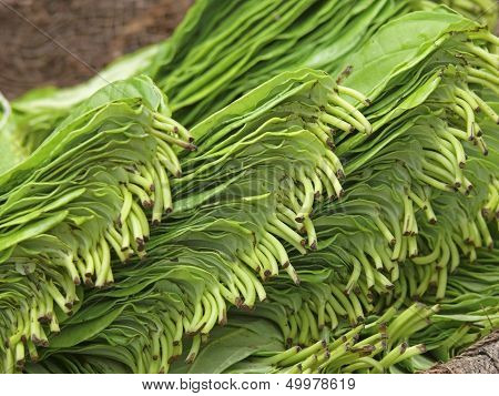 betel leaf at Market place india