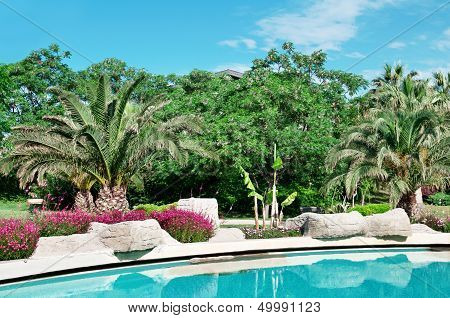 Palm Trees And Flowers Around The Outdoor Pool