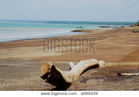 Costa Rican Beach Scene