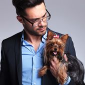 casual young man holding a puppy and looking at it. on gray background poster