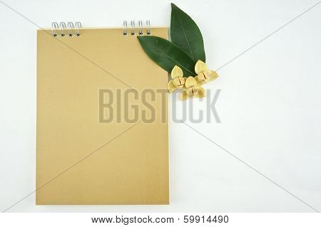 Devil Tree And Gold Calendar With White Background
