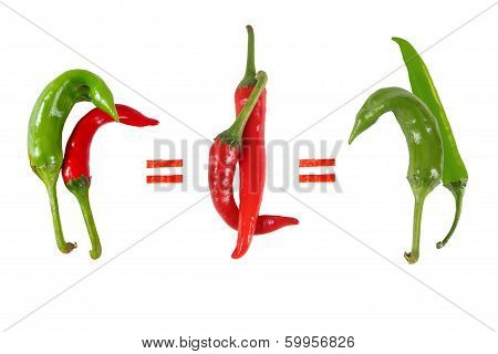 Picture of the peppers, as an illustration of different sexes and same-sex love