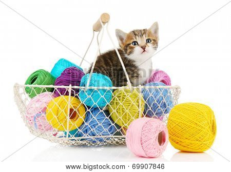 Cute little kitten in basket with thread isolated on white poster