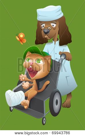 Dog veterinarian carries a cat in a wheelchair. Vector cartoon illustration poster
