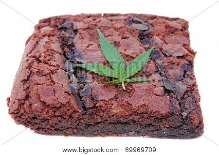 Cooking with Cannibals. Genuine Medical Marijuana Chocolate Brownie, aka medical cannabis brownies, Pot Brownies or edibles. Isolated on white with room for your text. Medical Edibles are a good fun.