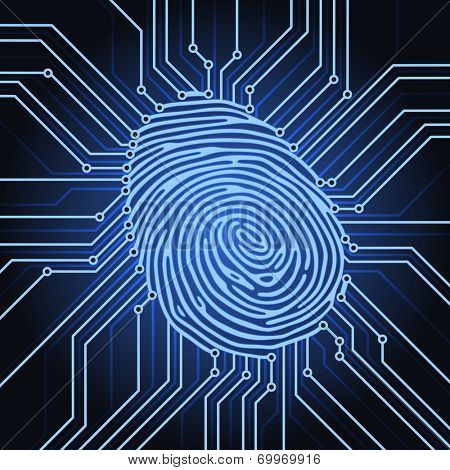 fingerprint identification system electronics scheme