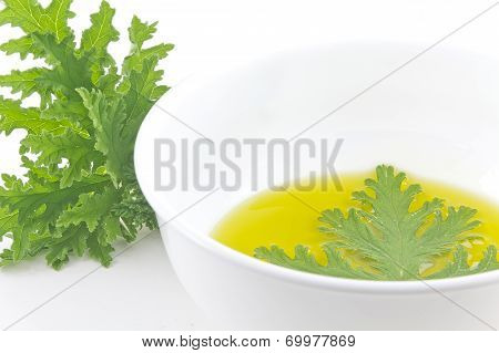 A citronella plant leaf resting in oil to make homemade mosquito repellant poster
