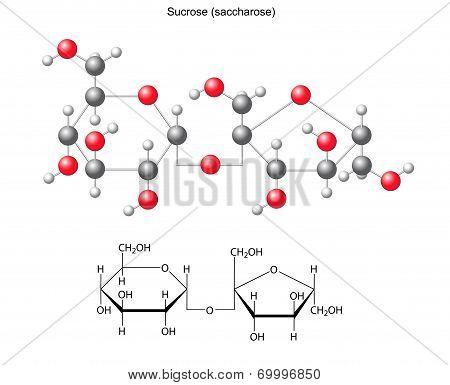 Structural Chemical Formula And Model Of Sucrose (saccharose)