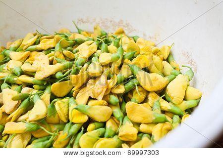 Rattlebox Flower - Thai Food Ingredient