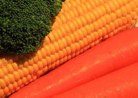 Broccoli, Corn & Carrots
