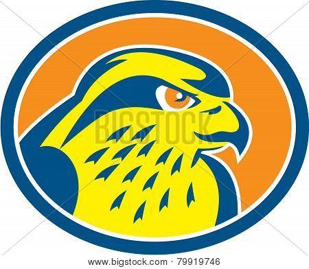 Peregrine Falcon Head Circle Retro