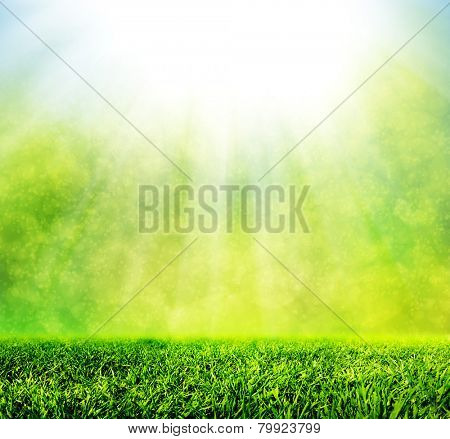Green spring grass against natural nature blur. Sunny morning light with sparkle and glitter. HD quality, perfect for background, nature theme etc.