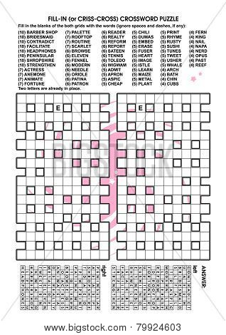 Criss-cross word puzzle