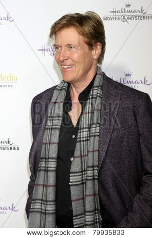 LOS ANGELES - JAN 8:  Jack Wagner at the Hallmark TCA Party at a Tournament House on January 8, 2014 in Pasadena, CA