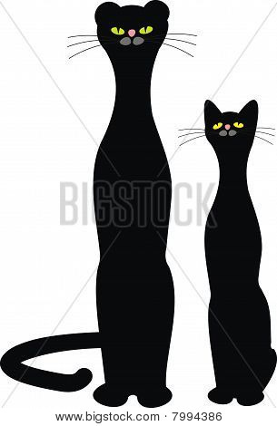 Black Cat and Panther