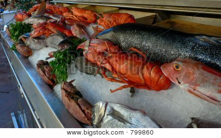lobsterdisplay