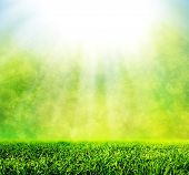 Green spring grass against natural nature blur. Sunny morning light with sparkle and glitter. HD quality, perfect for background, nature theme etc. poster