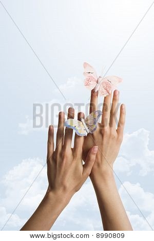 two butterflies on hands over the sky
