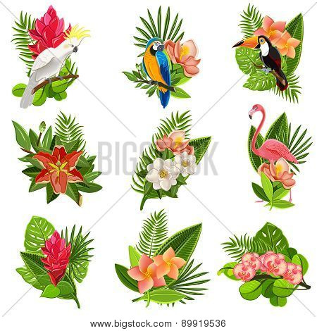 Tropical birds and flowers pictograms set