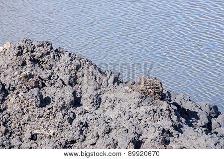 Black Mud Against Lake Water